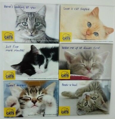 Fridge Magnet Cats Protection (7.9 x 5.4cms) Choice of 6