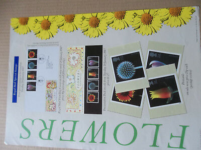Royal Mail A3 Post Office Poster Flowers First Day C Postcards Presentation Pack