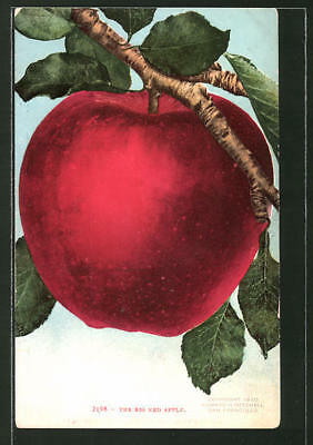 AK The Big Red Apple, Obst, Apfel