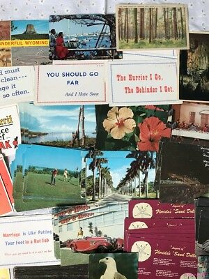 Large Lot Of Mixed Vintage Postcards~U.S.~Foreign~Nature~Floral~Comedy~More