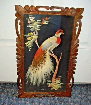 Vintage Real Feather Art Carved Wood Frame Bird Picture 18  x 11  MEXICO