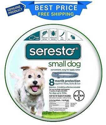 HOT_Bayer Seresto 8 Month Flea & Tick Prevention Collar for Small Dogs