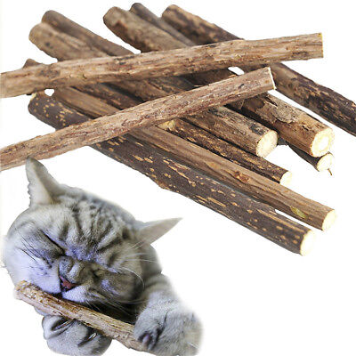Cat Natural Catnip Stick Cleaning Teeth Molar Toothpaste Tasty Snacks Fun Toy jp