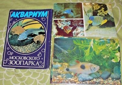 24 X Cards Folder With Moscow Russia Zoo Aquarium Fishes From 1985