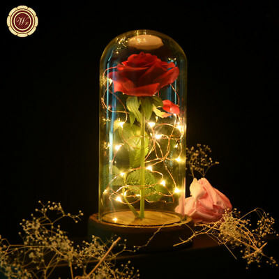 WR Beauty and the Beast Enchanted Red Rose Glass Dome Lamp Valentine's Gifts Her
