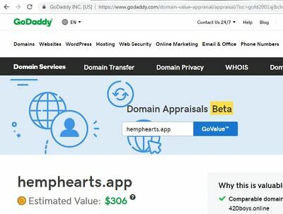 Hemp Hearts dot APP Domain Name Present GoDaddy value is $306.00