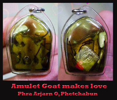 Rare Thai Amulet Charming Goat attractive makes love money Lucky especially