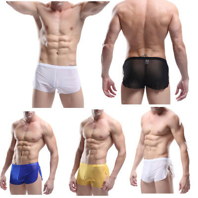 Sexy Mens Mesh Sheer See Through Boxer Briefs Trunks Underwear Swimming Shorts