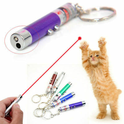NEW 2-in-1 Laser Lazer Pen Pointer Keychain Keyring With torch Cat Dog Toys*UK