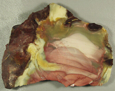 WILLOW CREEK JASPER...Abstract orby pattern in pastel shades of pink & green.