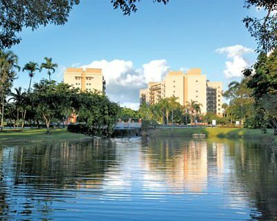 Wyndham Palm Aire, 64,000, Points, Annual,timeshare, Deeded
