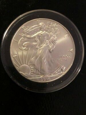 2014 Silver Dollar Coin ~ 1 troy oz AMERICAN EAGLE ~ Walking Liberty .999 Fine