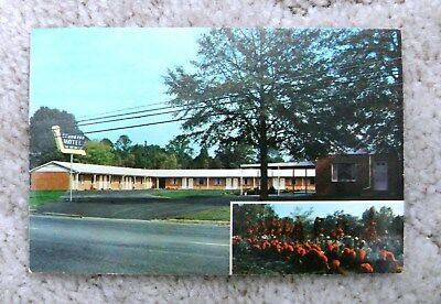 Vintage Sequoyah Motel Postcard Summerville And Trion George Ga Postcard