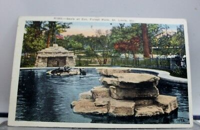 Missouri MO St Louis Forest Park Zoo Seals Postcard Old Vintage Card View Post