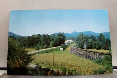 Georgia GA Highway Clayton Postcard Old Vintage Card View Standard Souvenir Post