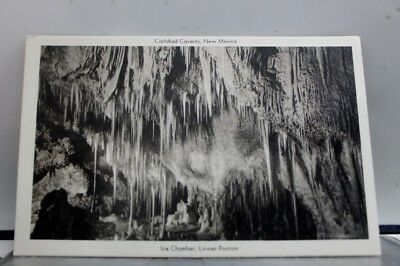 New Mexico NM Carlsbad Caverns Ice Chamber Postcard Old Vintage Card View Post