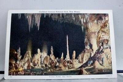 New Mexico NM Totem Poles Carlsbad Caverns Postcard Old Vintage Card View Post