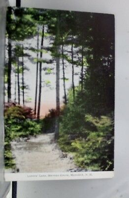 New Hampshire NH Lovers Lane Meredith Postcard Old Vintage Card View Standard PC