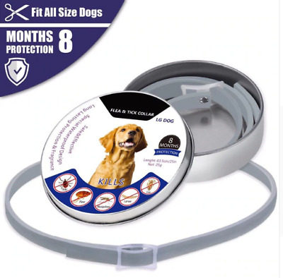 New  Bayer-Seresto-Flea-and-Tick-Collar-for-Large-Dogs
