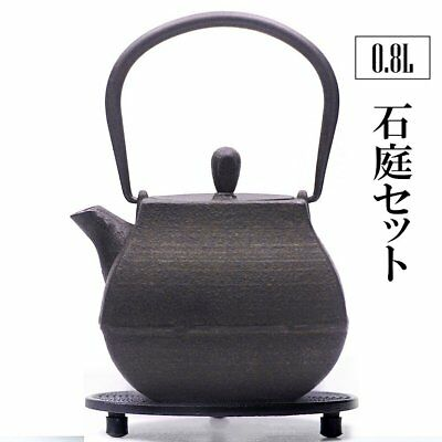 Japanese teapot Kyusu Nambu Tekki Cast Iron Tetsubin Japan Tea Black Nanbu