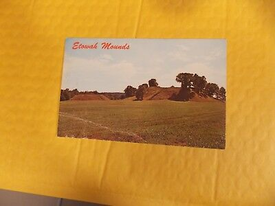 ETOWAH INDIAN MOUNDS CARTERSVILLE  Postcard ,Georgia GA