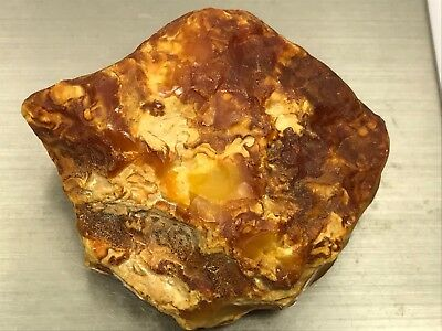 43gr Royal Natural Baltic Amber stone