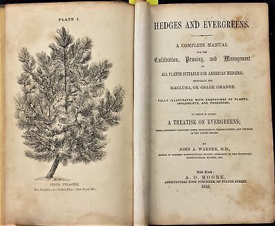 1858 antique HEDGES EVERGREENS GARDENING illustrated plants hedging tools 284pgs