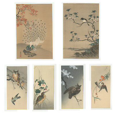 Reproduction Japanese Woodblock Prints, Ukiyo-e, Set of 6, Bird and Flower