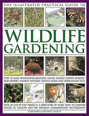 The Illustrated Practical Guide to Wildlife Gardening - 9781846811487