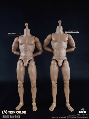 COOMODEL 1/6 Muscle male Body NO:BD009 25cm Action Figure Doll Model