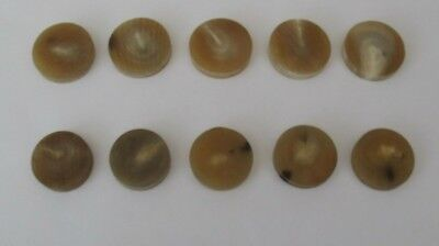 10 Light  Colour Ox Horn Spacers For Walking Stick Making/ Crafts/jewellery