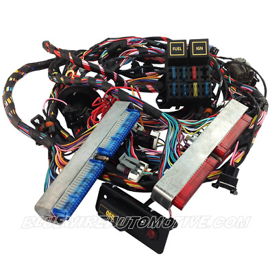 Ls1 Standalone Engine Wiring Harness (Dbc) Auto Trans Hot Rod Commodore Chev