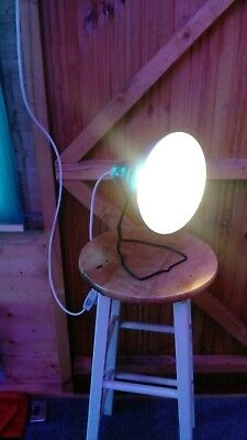 vintage photax lamp tabletop or wall hanging