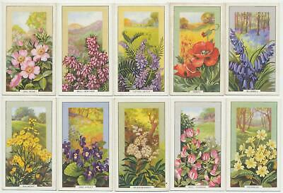 GALLAHER - 1939 : Wild Flowers Complete Set (48) Cigarette Cards