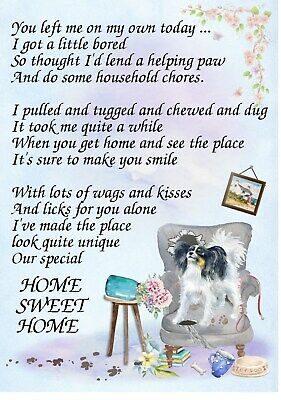 "Papillon Dog (4"" x 6"") Blank Card/ Notelet with funny poem by Starprint"