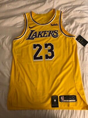 f95375fce52 Lebron James Authentic Nike Lakers Jersey size Large. Never been worn, with  tags