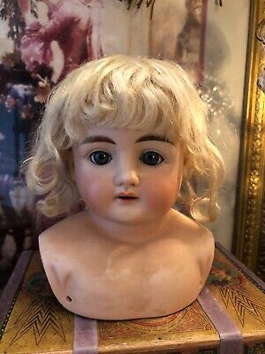 ~ Beautiful Face! Antique ABG 1235 Shoulder Head Doll w/Orig. Mohair Wig AS IS