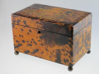 Large Antique 19th Century Faux Tortoiseshell Tea Caddy