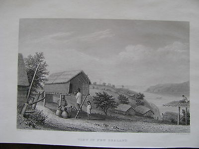 "1840 ORIGINAL ""View in New Zealand"""