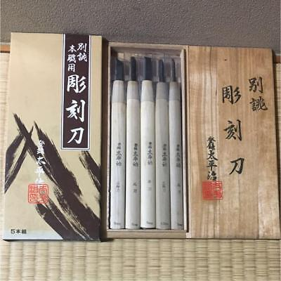 別誂  Japanese Chisel for professional Carpenter tool NOMI 5 set