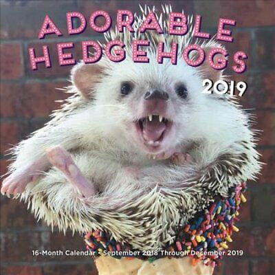 Adorable Hedgehogs Mini 2019 16-Month Calendar - September 2018... 9781631064661