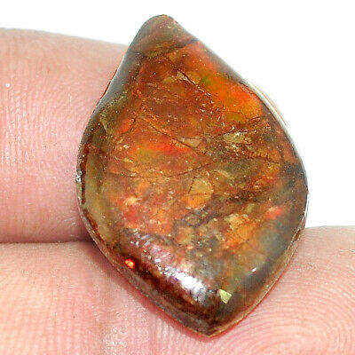 Natural 13.70cts ammolite (canadian) cabochon 24x16mm fancy loose gemstone s1746