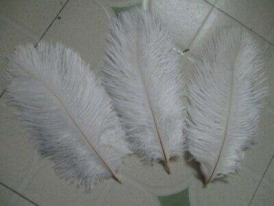 Beautiful white ostrich feathers 10pcs long 6-8inch stage celebration decoratio
