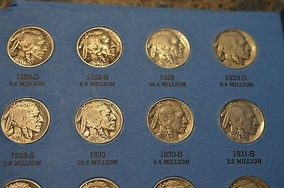 Scarce Buffalo Nickel Collection 1913-38! *with 8 Awesome Keys! *42 Total Coins!