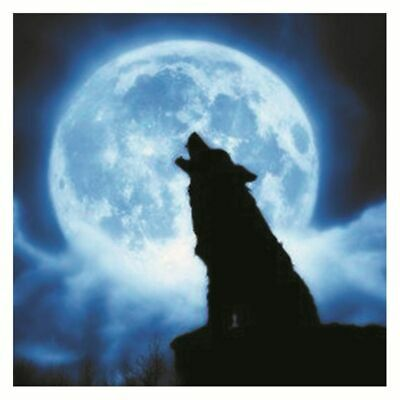 Howling Wolf Luminous DIY 3D Wall Sticker Glow In The Dark Home Room Decal Decor