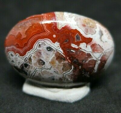 25.2 ct Crazy Lace Agate Multi Color Red and White Natural Gemstone Cab Cabochon