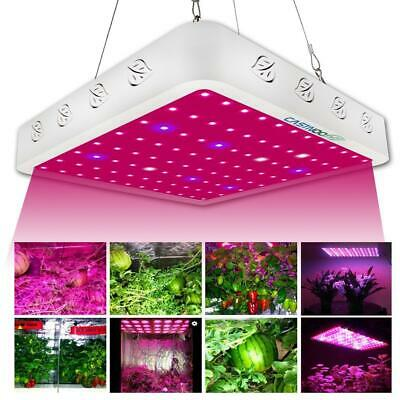 3000W Full Spectrum Hydro LED Grow Light For Medical Plants Veg Bloom Indoor GA