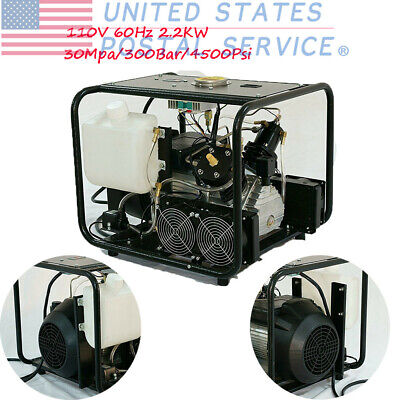 110V 4500Psi Portable High Pressure Air Compresssor For CO2 Tanks For Filling US