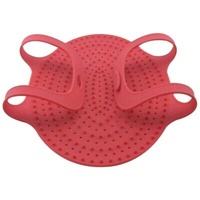 Heat Resistance Silicone Turkey Poultry Lifter Non-Stick Oven Barbeque Mat Bb H1