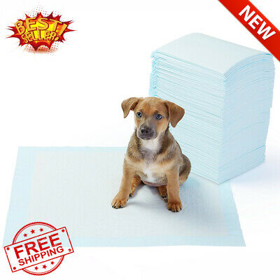 AmazonBasics Pet Training and Puppy Pads, Regular -100 Count  House Training Pad